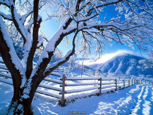 ... winter nature photography cold nature wallpapers winter nature