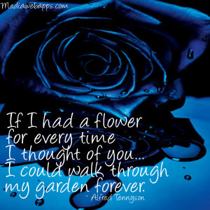 blue, blue rose, flowers, forever, garden, quote, quotes, rose, roses ...