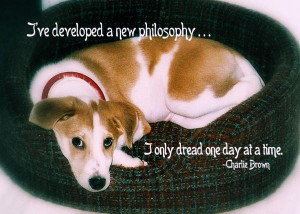 Sweet Puppy Quote Print by JAMART Photography