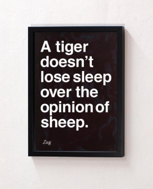 Don't Lose Sleep Over the Opinion of Sheep