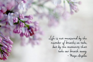 Purple Lilac Photograph, Inspirational Quote, Maya Angelou quote ...