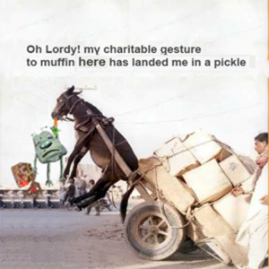 Poor Democratic Donkey Disaster-Funny Picture.This picture is about ...