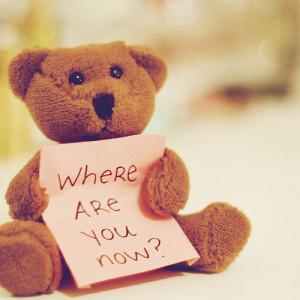bear, cute, miss you