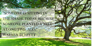 Someone is sitting in the shade today because someone planted a tree a ...