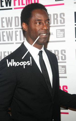 Fired Grey's Anatomy Star Isaiah Washington Admits Slinging Homophobic ...