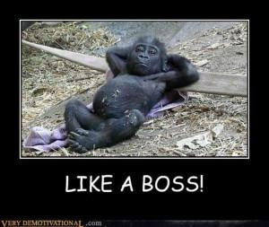 Funny Animals Like Boss