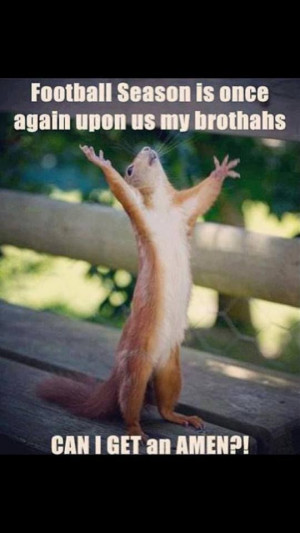 Amen! FUNNY picture of squirrel proclaiming football season!