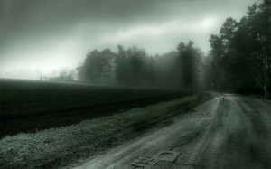 Home - Wallpapers / Photographs - Nature - Gloomy weather