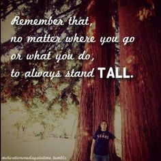 Tall Quotes