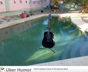 pool this morning. In Phoenix. It's cold. | Funny Pictures, Quotes ...