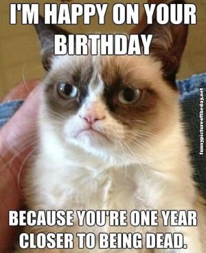 Happy Birthday Funny Grumpy Cat Meme