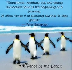 Penguin quote via Peace of the Beach on Facebook at www.facebook.com ...