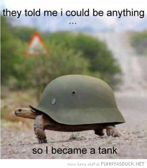 animal turtle army helmet shell could be anything became tank funny ...
