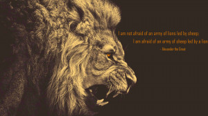 quote:I am not afraid of an army of lions led by sheep... - Alexander ...