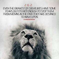 Warriors Quotes, Warrior Quote, Brazilian Jitz, Quotes Words Image ...