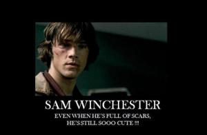 Sam-Winchester-Motivational-Pictures-DDD-sam-winchester-21034913-500 ...
