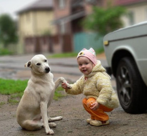 Super Cute Pictures of a Little Girl and Her Dog