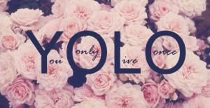 pink,quote,rose,roses,yolo-a35bf76f594a54e7945b2ab80c79f382_h.jpg