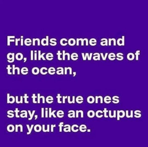 ... sayings in these funny friendship quotes are so deep that only true