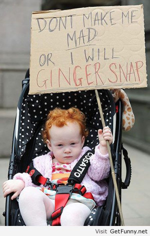 Funny ginger sayings - Funny Pictures, Funny Quotes, Funny Memes ...