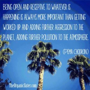 Pema Chodron quote - open and receptive