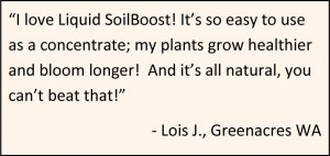 Liquid SoilBoost Quart Quote