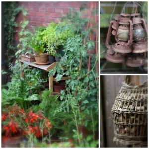 The Mini Family Vegetable Garden