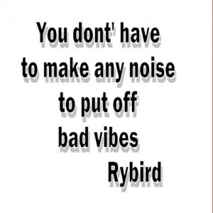 Bad vibes quote