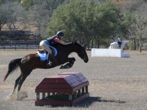 Discuss Hunter/Jumper Critique at the Critique My Horse forum - Horse ...