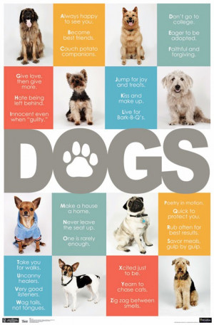 ... , Dogs Abc, Posters Alphabet, Dogs Posters, Dogs Life, Animal Dogs