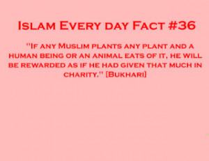 Islamic Quotes on Charity ..