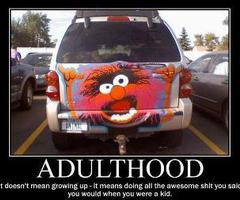 Pics For -gt; The Muppets Animal Quotes
