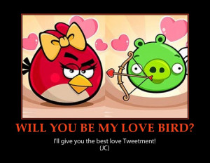 Angry birds-valentine-funny