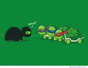 Ninja Turtles – comic