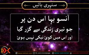 ... -%5B-urdu-quotes-%5D-aanso-baha-us-din-par-urdu_quotes_sayings_17.jpg