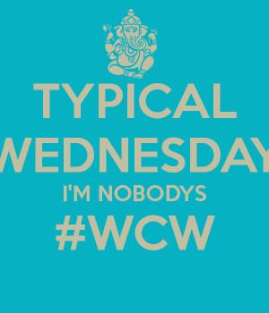 Nobody 39 s WCW