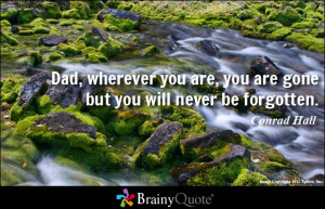 Miss You Dad Quotes From Son Dad, wherever you are, you are