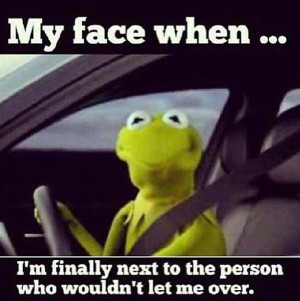 Even Frogs Love Kermit The Frog Humor Funny Pictures Add