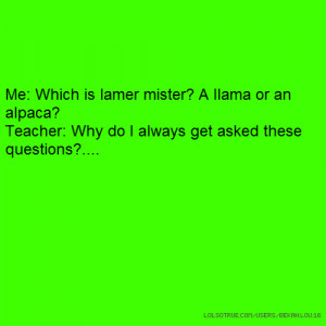 Me: Which is lamer mister? A llama or an alpaca? Teacher: Why do I ...