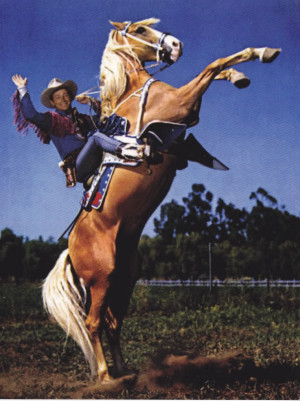 Details about ROY ROGERS PALOMINO TRIGGER HORSE REARING POSTCARD