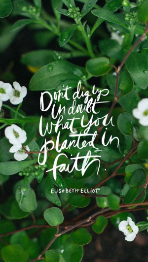 Don 39 t Doubt in Faith in You Dig Up What Planted