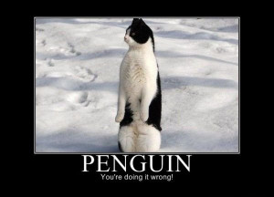 Funny Penguin Quotes Funny penguin .