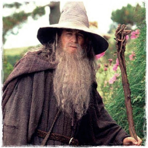 Gandalf Quotes A Wizard Is Never Late