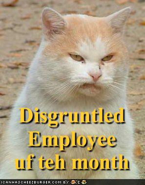 ... pictures-disgruntled-employee-of-the-month.jpg (showing of total 6225