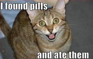 found-pills-ate-pills-hahaha.jpg