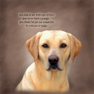 Labrador Retriever Poetic Portraits - Eyes of Love