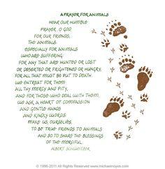 Prayer for Animals