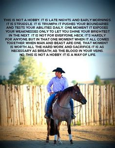 Horse, Barrel Racing, and Rodeo Quotes.