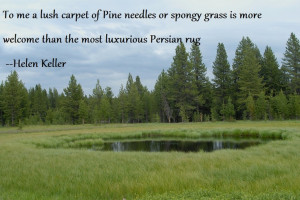 great quote... picture of yellowstone NP