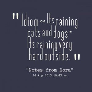 Raining cats and dogs quotes quotesgram for Hard exterior quotes